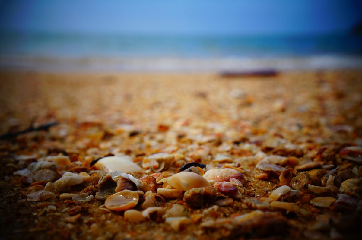 no empty shells